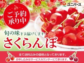 19sakuranbo_okaimonobana.jpg