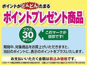 s-point7.jpg
