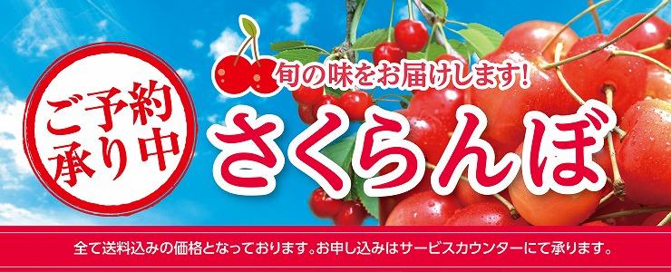 s-17sakuranbo_topbana.jpg