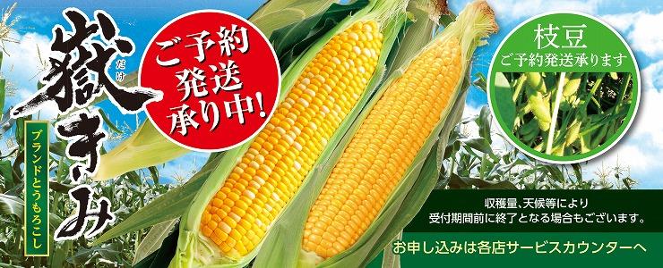 s-17toumorokosi_topnbana.jpg