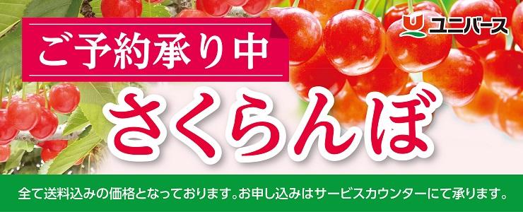 s-18sakuranbo_topbana.jpg