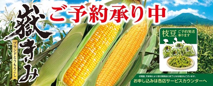 s-18toumorokosi_topbana.jpg