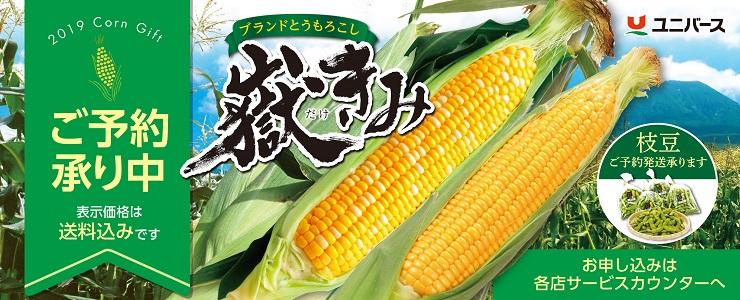 s-19dakekimi_topbana.jpg