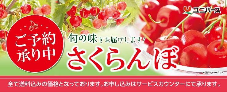 s-19sakuranbo_topbana.jpg